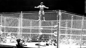 Image result for steel cage death match