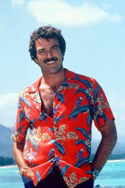 Image result for magnum pi